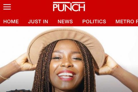 punch-newspaper-nigeria-thefisayo-olayinka-bello